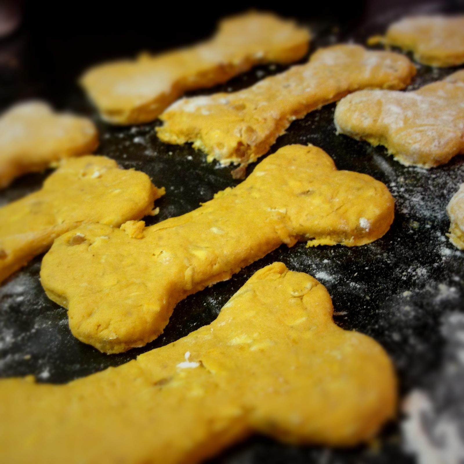 Vegan Pumpkin, Peanut Butter & Rolled Oats Dog Treats